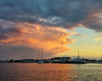 Newport - 2015 - 1