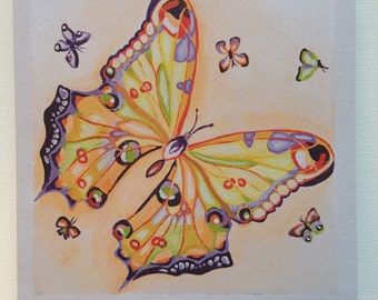 Set of 5 greeting cards: Butterfly in Orange