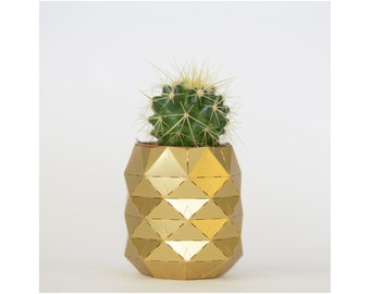 Brass pineapple plant pot with living cactus or succulent plant