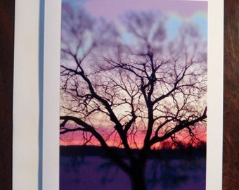 Silhouetted Sunrise. Photo Greeting/Note Card. Blank Inside.