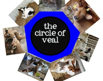 Mr. Almond's Look the Other Way and Circle of Veal (Warning: Adult Language) from the Carnies Vegan Cartoon