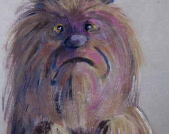 Portrait of Minnie, dog in a bad mood