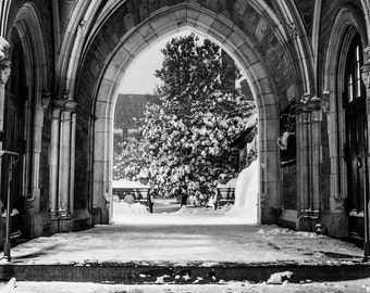 Black & White Princeton 2