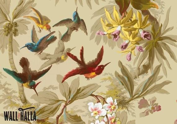 tropical bird wallpaper for walls - photo #24
