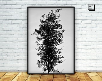 Tree photography, tree wall art, Black and white photography, tree photo print, printable art, instant, digital print, tree art, home decor