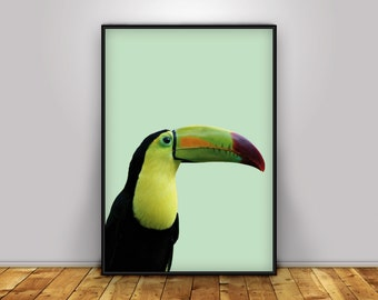 Toucan print, Toucan Poster, Tropical Bird, Toucan Wall Art, Tropical Wall Art, Bird Print, Tropical Decor, Toucan Printable , Toucan Art