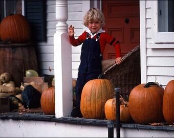 Little Boy with Pumpkins - Autumn Vermont
