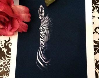 Zebra Limited Edition Print