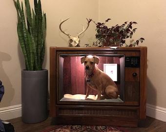 Price Reduction! Refurbished TV Dog/Cat House, Repurposed Consule Television, TV Dog House, Dog House, Cat House, Pet Bed, Console TV Bed