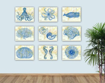 Nautical Sea Life Art, Sea Creatures Prints, Sea Fan Nursery, Create Your  Display