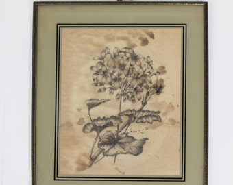 Antique Framed Graphite Drawing of Flowers