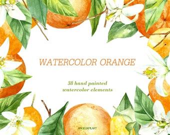 Orange Watercolor Clipart.  38 Watercolor Elements(orange fruit, flowers, leaves) wedding invitation, floral, greeting card, diy clip art.