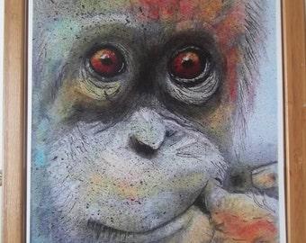 Orangutan Artwork Print