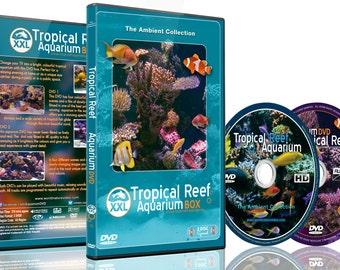 Tropical Reef Aquarium XXL Box