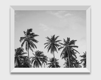 Palm Trees Printable, Photography, Digital Download, Large Palm Tree Art, Tropical Wall Art, Print Instant, Wall Decor, Beach Prints