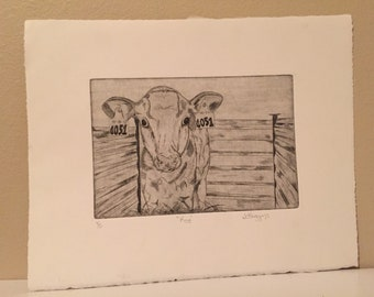 Cow Copper Etching Print