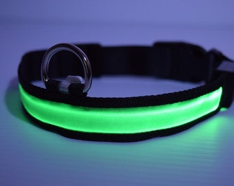LED lighted Green Dog Collar