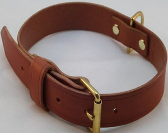 Leather DOG COLLAR Brass Fittings Staffordshire Custom Handmade