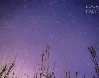 Starry Skies and Grass