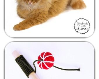 C & M Katzenspiezeug tiny cat toy