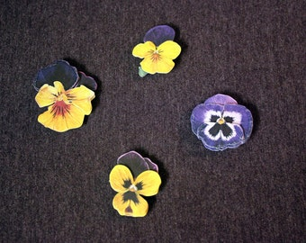 Purple and Yellow Violet Flower Magnets