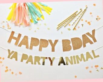 Birthday Banner   Banner   Birthday Party Banner
