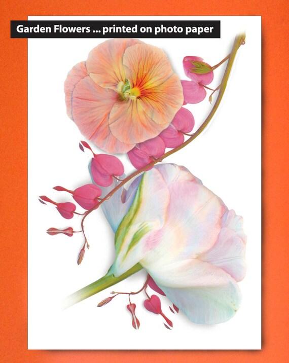 "Flower garden prints on paper. 8""x10"" and 11""x14"". Garden flowers that last. Bleeding Heart on photo paper. Sized for standard framing."