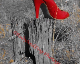 Abandoned Red Shoe