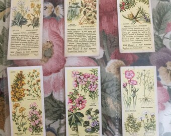 Vintage 1936 typhoo 2nd series of 25 wild flower cards