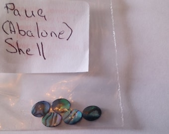 Paua (Abalone) Shell, see photos for size