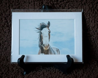 Matted Print - Work Horse