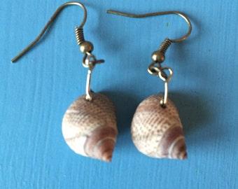 Handmade Sea Snail Dangling Earrings