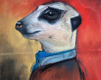 Distinguished Meerkat