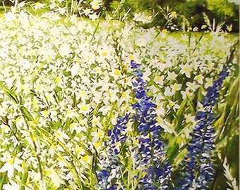 "Unique ""Wide meadow"" 140 x 70 cm - acrylic painting"
