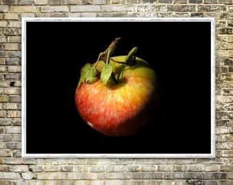 Apple eclipse print, artwork, color photography, kitchen, classical, contrast, instant download