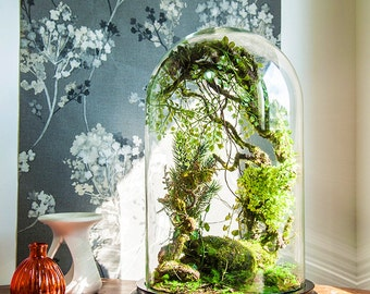 Artificial plants forest terrarium, Cabinet of curiosities, dome Bell glass, birthday gift wedding, Christmas decoration