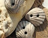 Handmade RAKU Seashell Button Set of 3