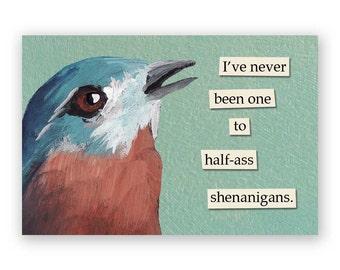 Shenanigans Magnet - Bird - Humor - Gift - Mincing Mockingbird - Stocking Stuffer
