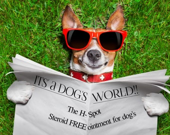 Dogs Hot Spot Allergy Ointment/Salve - Steroid FREE!