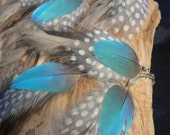 Beautiful macaw feather earrings, long chain sky blue with grey and white, cruelty free feathers