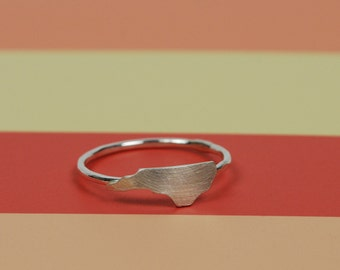 Tiny NC Ring in brushed silver