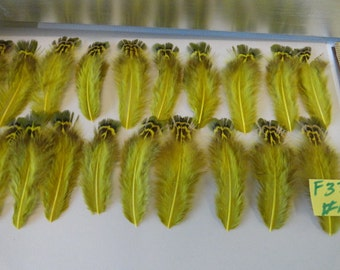 Choose your Olive Pheasant Feathers for Earrings Hair Pieces Crafts F 33
