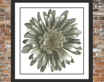 White Chrysanthemum Counted Cross Stitch Pattern