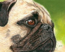 Pug Painting Print, Contentment, Dog, Art Print, Reproduction, Fine Art, Pet, Realism, Pastel, 5 x 7, Painting Print, Animal, Nature