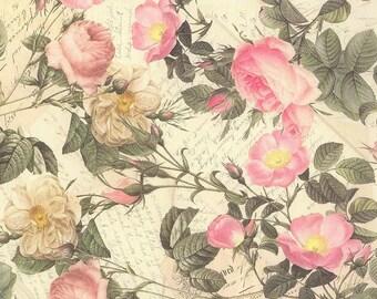 Italian Paper Pastel Pink Roses Print - Italy  IP N04