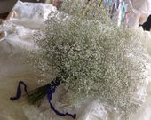 Wedding flowers - Lovely Natural Baby's Breath - ( gypsophila ) - Limited Supply- Organic in the North Cascades -add to your bridal bouquet!