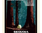 Sequoia National Park Folded Note Cards - 6 with envelopes