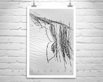 Desert Print, New Mexico, Black and White Photography, Sand Dunes, Minimalist Art, Nature Photography, Abstract Art, Vertical Wall Art