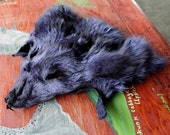 CRAFT QUALITY shaped purple dyed Arctic fox face for crafts, taxidermy practice, display, more DESTASH