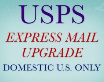 EXPRESS MAIL shipping upgrade - USPS- domestic United States only